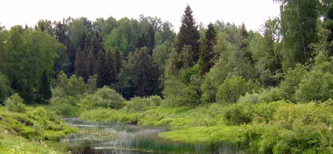 Грузоперевозки Москва - Лесной